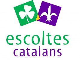 Logotip quadrat color Escoltes Catalans