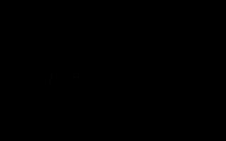 Logotip negre horitzontal Escoltes Catalans