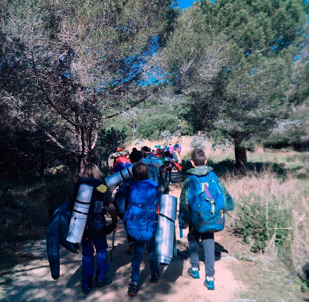 Agrupament d'excursió